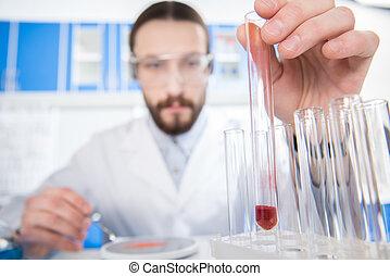 forskare, visande, provrör