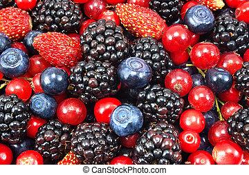forskellige, frisk, berries, idet, baggrund