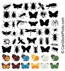 forskellige, insekter, stor, kinds., samling, vektor,...