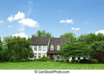 forstads, enlig familie hus, hjem, plæne, træer, tudor