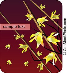 Card or Copybook cover forsythia flower and brunches