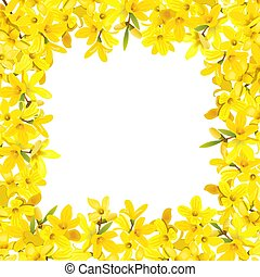 Forsythia suspensa frame. Card template. fluffy blossoming yellow spring tree enclosure. Golden Bell, flowers boxing. Vector illustration. For prints, posters, flyer, flier, text copy space textile