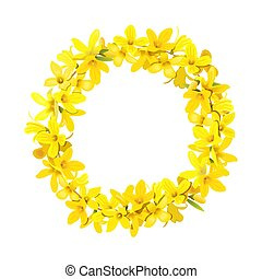 Forsythia wreath, Golden Bell festive decoration garland template. Easter tree chaplet, spring crown with blossoming yellow flowers. Vector illustration. card, prints, invitations, vector illustration