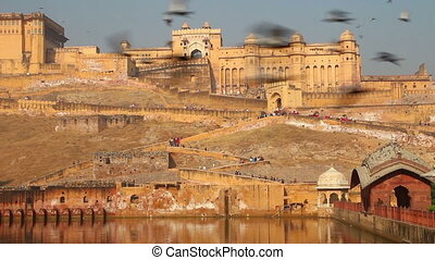 fort and doves in Jaipur India