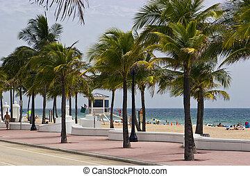 fort lauderdale - boardwalk on fort Lauderdale in Florida