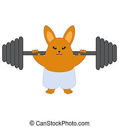 forte, coniglietto