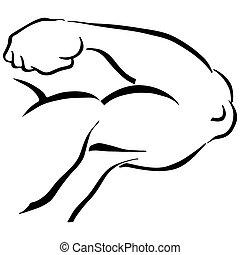 forte, flessione, braccio, uomo