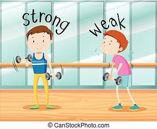 forte, fraco, palavras, oposta