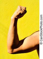 forte, macho, braço, mostra, bíceps