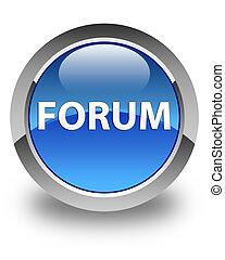 Forum glossy blue round button