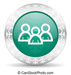 forum green icon, christmas button
