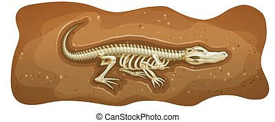 Fossil - Poster of a dinosuar fossil on a white background