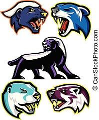 fossorial, carnívoros, e, mamíferos, mascote, cobrança