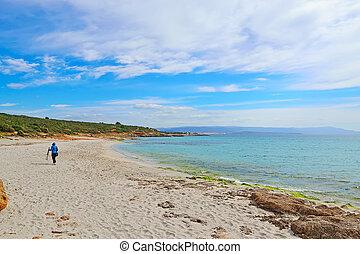 fotógrafo, com, tripé, andar, em, le, bombarde, praia