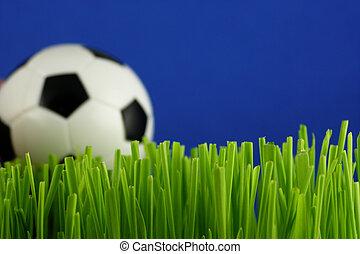 fotboll bal, in, gräs