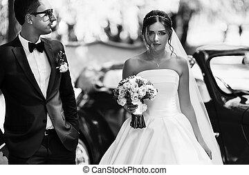 foto blanquinegra, de, el, magnífico, pareja