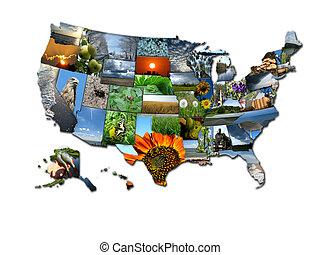 foto, collage, von, ungewöhnlich, landkarte, von, staaten,...