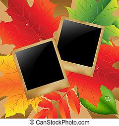 foto, foglie, retro