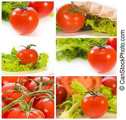 foto, kollektion, av, mogna tomater