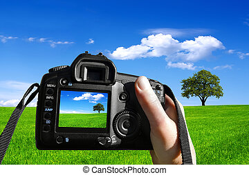 foto, natuur