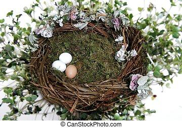 foto, nido, manipolazione, fantasia, fondo, digitale