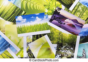 foto, pila, natura