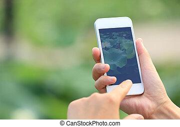 foto, tagande, mobiltelefon