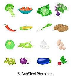 foto, vegetales, vector, conjunto, realista