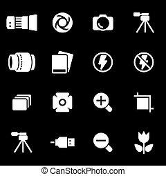 foto, weißes, vektor, satz, heiligenbilder