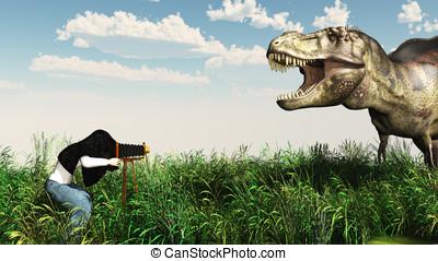 fotograaf, fauna
