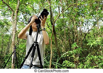 fotograf, in, wald
