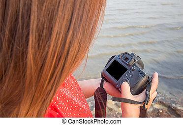 fotograf, ohnisko, prohlídka, sea., samičí, vybraný