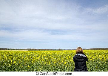 fotografar, violação, campo