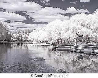fotografia, italiano, pond., moscow., infravermelho
