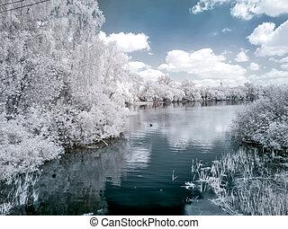 fotografia, lago, white., infravermelho