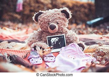 fotografia, szczeniak, niedźwiedź
