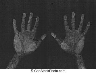 fotokopie, handen, scanderen