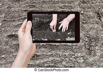 foto's, aanplant, aardappels, tuin, farmer