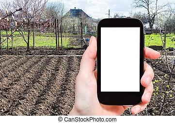 foto's, groente, smartphone, tuin, farmer