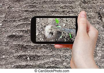 foto's, schoffel, grond, loosening, farmer