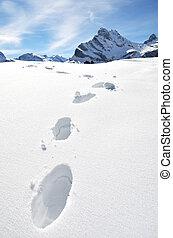 fotspår, in, den, snö