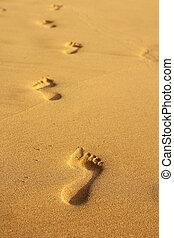 fotspår, in, sand
