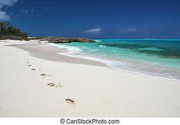 fotspår, på, den, öken, strand, av, litet, exuma, bahamas