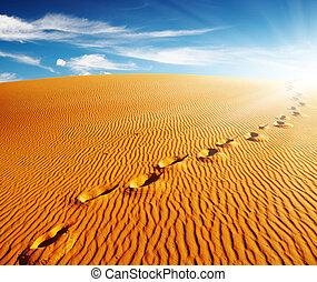fotspår, på, sandpappra dyn