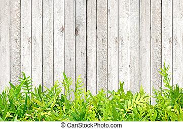 fougère, feuilles, sur, bois, fond