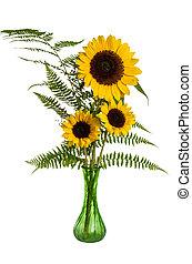 fougères, fleur, tournesols, arrangement