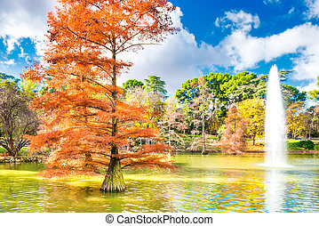 Fountain among old bald cypress trees in pond of Madrid park
