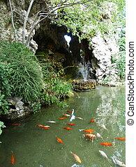 Fountain at the Botanical Garden in Avignon
