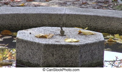 Fountain in garden in autumn