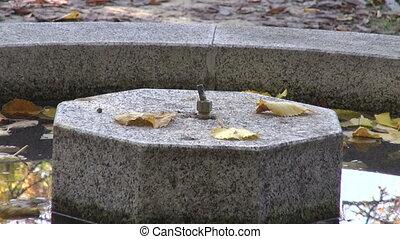 Fountain in garden in autumn